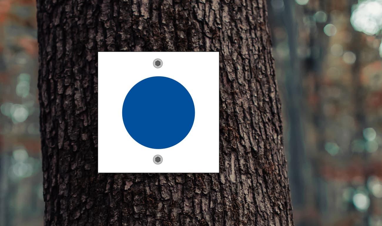 weißes Quadrat mit blauem Kreis auf Baumstamm