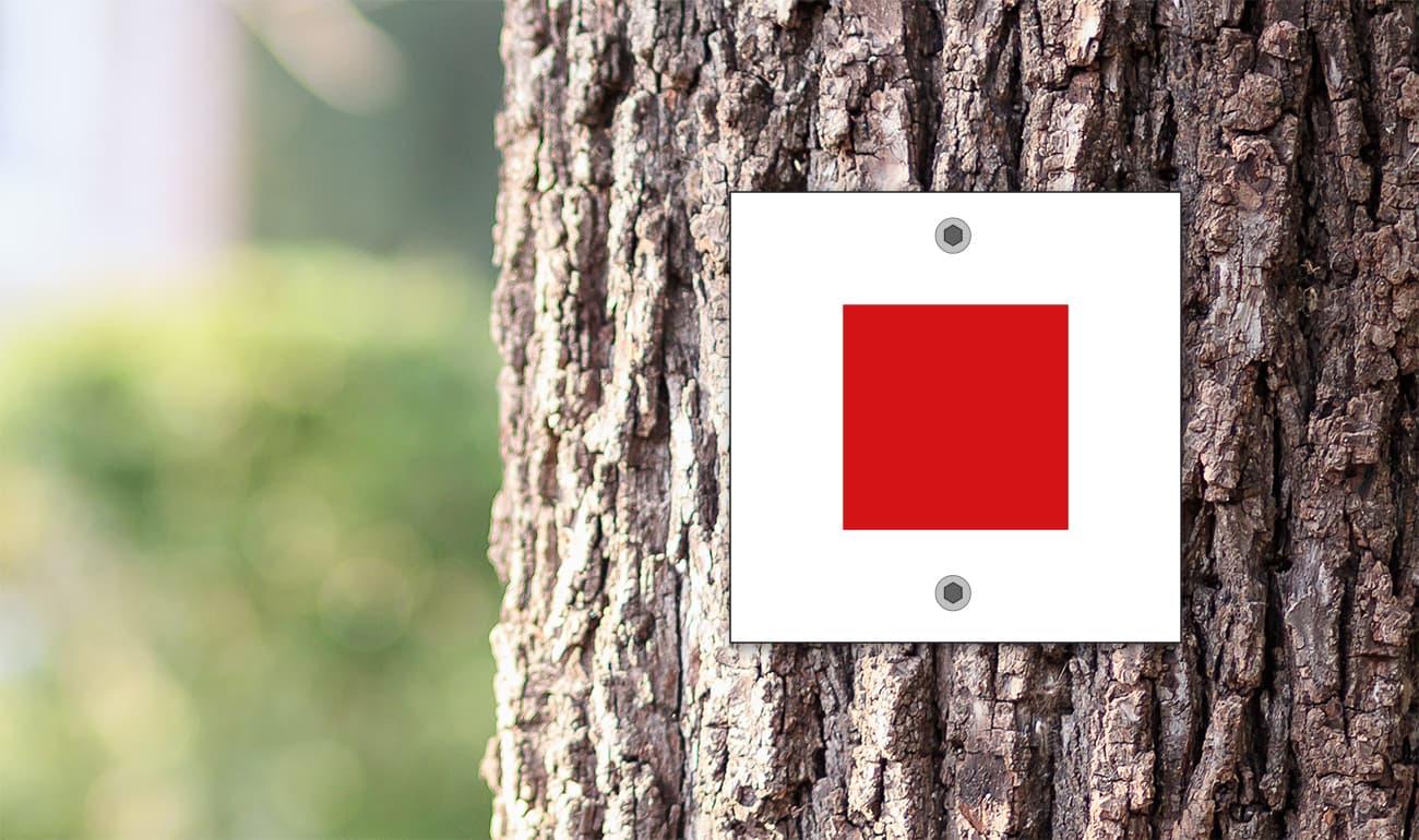 weißes Quadrat mit rotem Quadrat auf Baumstamm